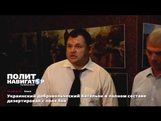 Украинский добровольческий батальон в полном составе дезертировал с поля боя