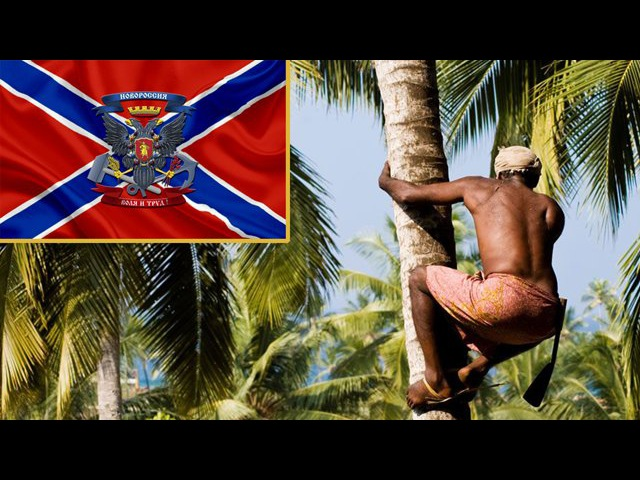 Половые отношения в племени янади или окончательная победа Новоросси