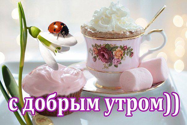http://cs624817.vk.me/v624817126/332c7/n-2rh0RLxpw.jpg