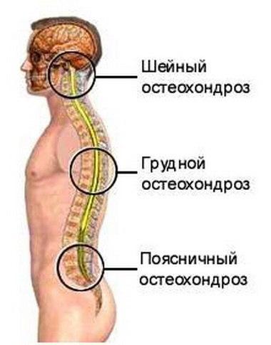 Санаторий номер 1 в Украине, по лечению болезней опорно-двигательного аппарата и периферической нервной