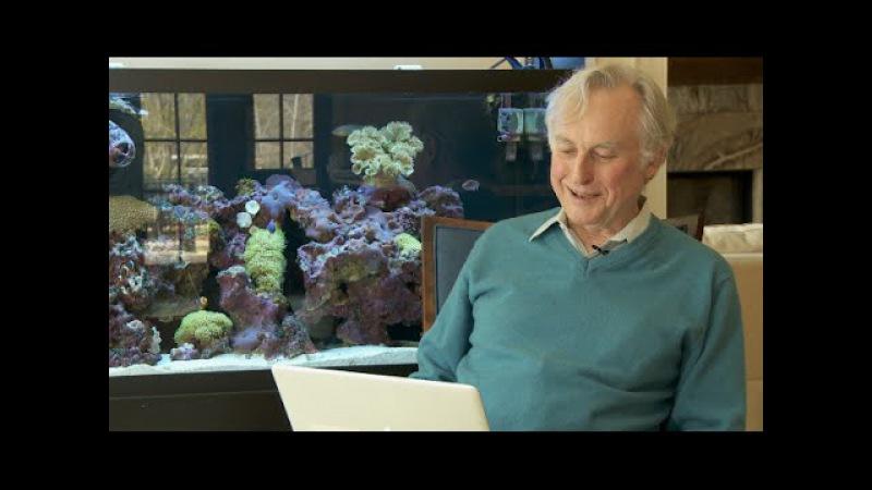 Love Letters to Richard Dawkins