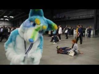 Видеоотчет с Ava expo 2014 от Питерских фуррей =^^=