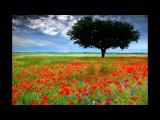 (A Rhyme) This Time in lyrics - Al Jarreau with Earl Klugh