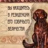 "Гостиница для собак ""Далматин.ру"""