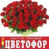 ДОСТАВКА • ЦВЕТОФОР • Цветы • Розы • Сыктывкар