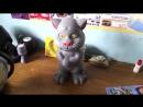 """Китайская игрушка Говорящий кот правильно реагирует на лозунг """"Слава Украине!"""