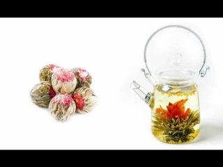 Чай цветок - связанный китайский зелёный чай из цветов, который раскрывается как цветок 3