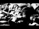 15   Первые концлагеря Талергоф и Терезин