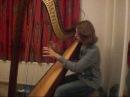 Cosmia Joanna Newsom harp cover