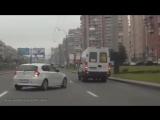 Животные на дороге! Человеческая доброта!!! _ Animals on the road