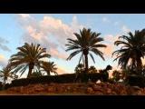 Июльский вечер (ч.1), красивый закат, облака и пальмы, Алаурин де ла Торре, Испания, 17 июля 2015 г