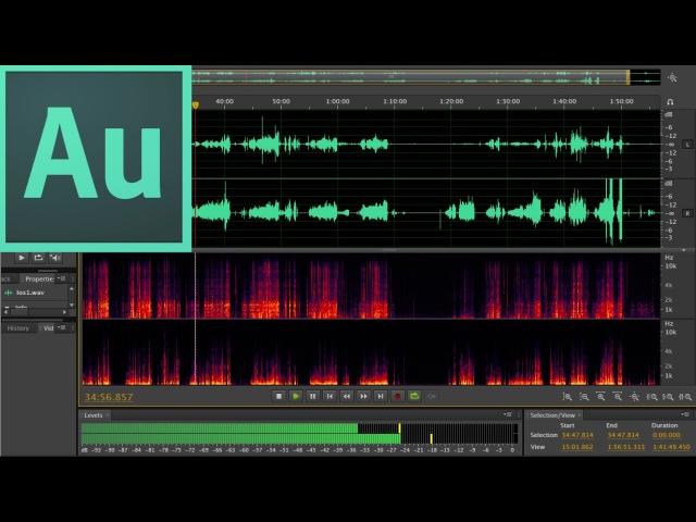 Учимся работать в программе Adobe Audition CS6. / Записываем звук / Убираем шумы