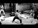 Bruce Lee Best Highlights 1080p HD