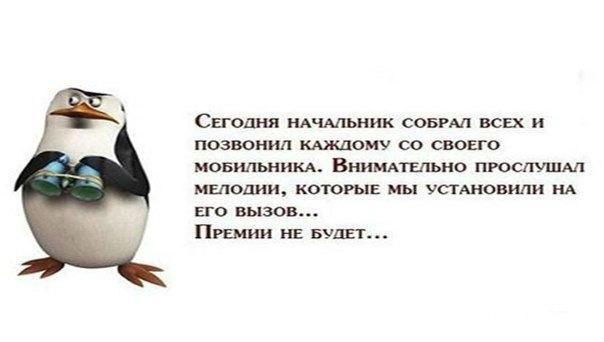 http://cs624821.vk.me/v624821783/213b2/fz-bDfjZJ3c.jpg