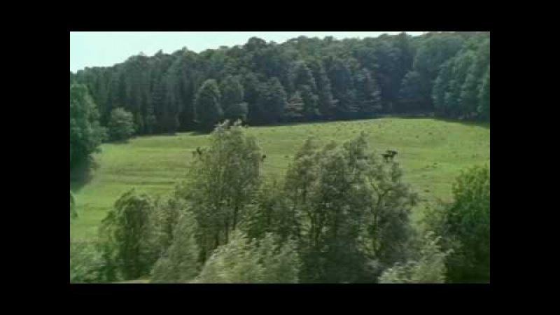 Высоцкий-Баллада о Любви-Айвенго