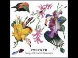 Who You Are (Original Mix) - Zwicker Feat. Heidi Happy