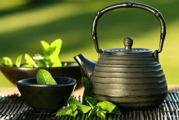 от зеленого чая можно похудеть