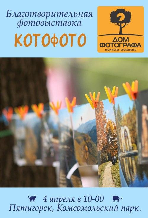 Афиша Пятигорск Благотворительная фотовыставка КотоФото