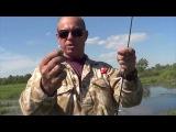Попла - поппер. Рыбалка с Калмыковым