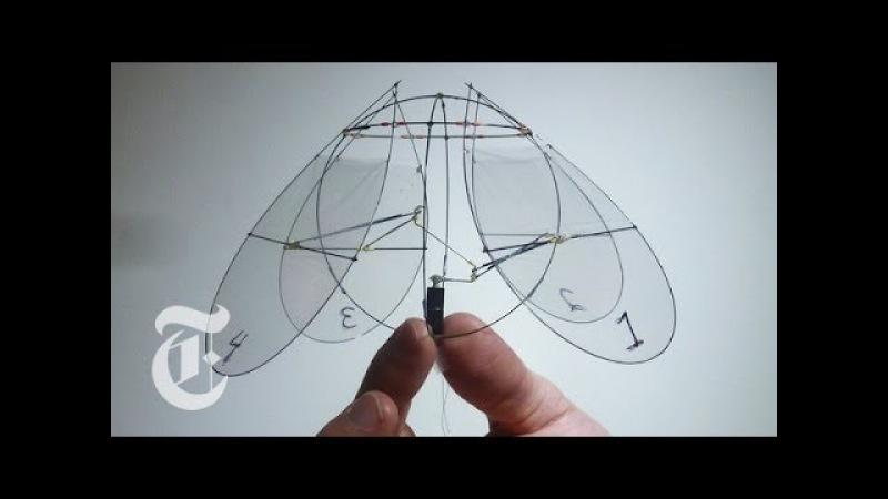 Летающая Медуза-Робот / Flying Jellyfish | ScienceTake w/ James Gorman | The New York Times