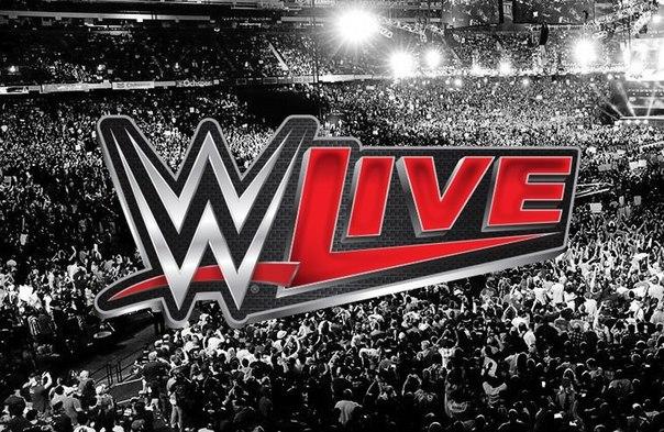 Результаты хаус-шоу WWE в Фэйрфоксе, Вирджиния 06.12.14