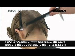 Trường đào tạo cắt tóc, tạo mẫu tóc giáo trình Toni&Guy 4a -www.truongdaycattoc.com