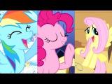 The Pony Hamsterdance YTPMV
