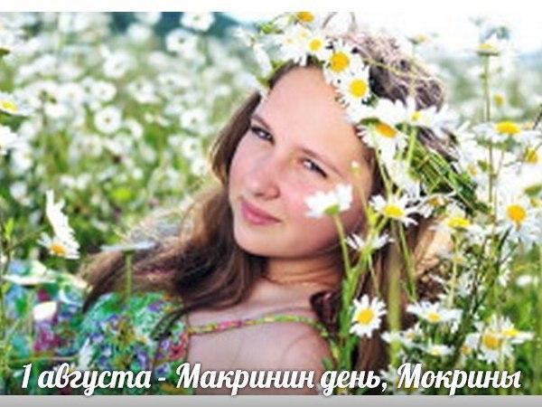 http://cs624824.vk.me/v624824731/3ae88/LzQ0NJLHA88.jpg