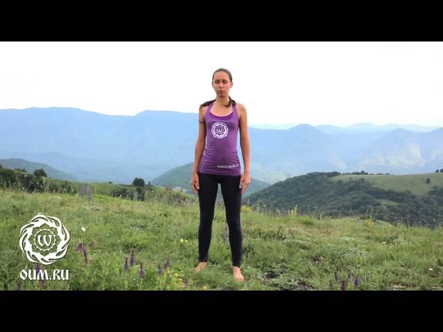 Видео по йоге. Йога каждый день. Утренняя практика. Екатерина Андросова