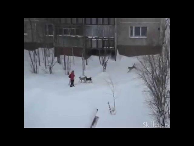 Дворник с лопатой спасает девушку - Skyrim