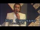 Ион Суручану - Незабудка
