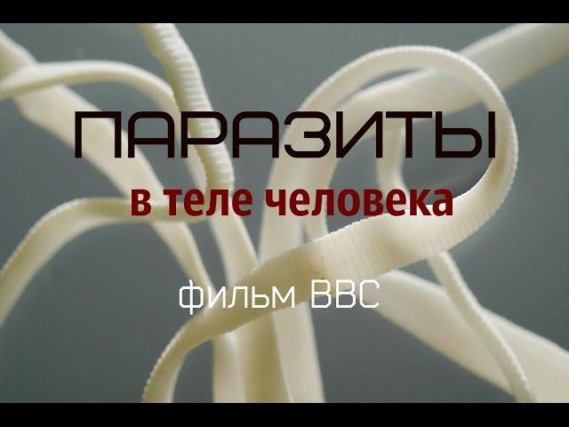 Паразиты в теле человека Ошеломляющее видео от BBC