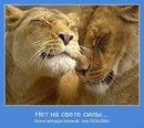 Олег Бадражан фото #5