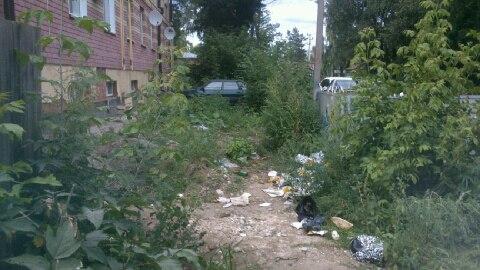 Житель Чистополя пожаловался на близкое расположение к дому мусорного контейнера — «Народный контроль»