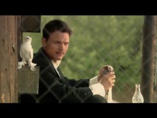 Мишка Япончик жалуется голубю за жизнь