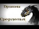 Драконы Средиземья Смауг и другие