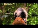 National Geographic - Башкортостан - Бурзянский район