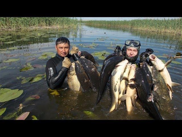 Подводная Охота Без Цензуры, Spearfishing Uncensored