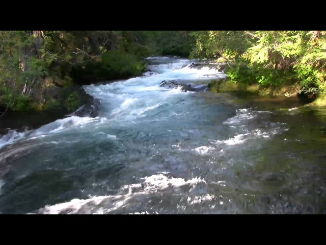 Very Relaxing 3 Hour Video of a Mountain Stream