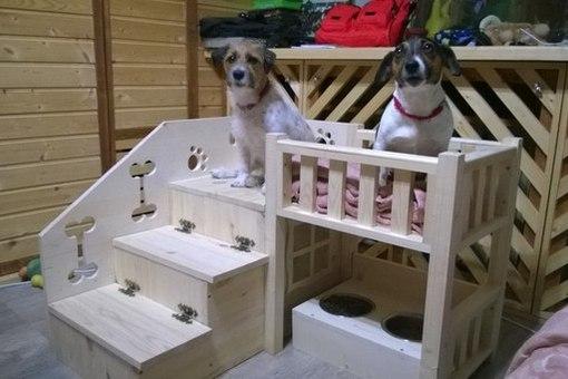 Домик для собаки мелкой породы своими руками