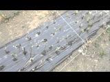 посадка  черенков  винограда 2 результат