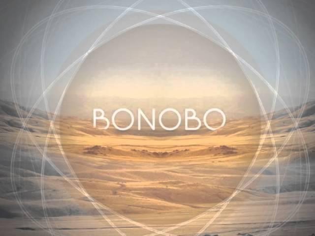 Maya Jane Coles : Something In The Air [Bonobo Remix]