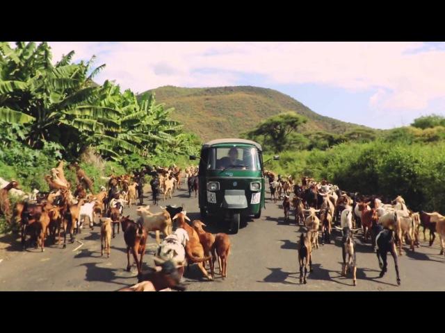 Roo panes — open road