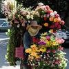 Цветы, доставка букетов, цветов| Нячанг, Вьетнам