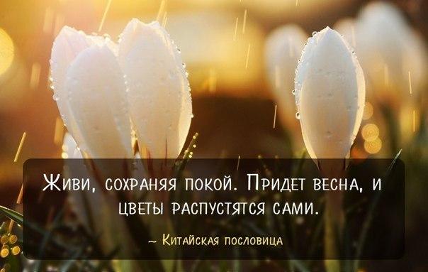 http://cs624828.vk.me/v624828583/21062/raUTgp9FdCM.jpg