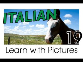 Learn Italian - Italian Farm Animals Vocabulary