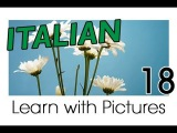 Learn Italian - Italian Plants Vocabulary