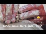 Шри Шри Рави Шанкар Бесстрастие и практика. Беседа (ВИДЕО) Sri Sri Ravi Shankar