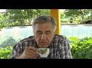 Семейный детектив - 8 серия сериал, 2012 Драма, детектив 1 сезон, 8 серия