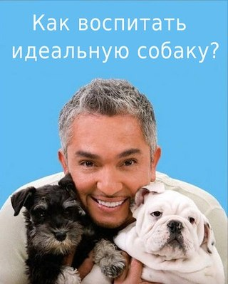 Переводчик с собачьего UfMKna1kFq0